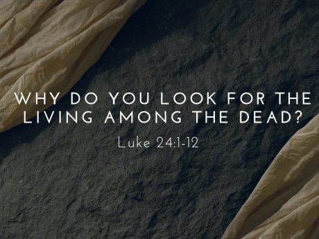 Why Do You Look For The Living Among The Dead? He Is Risen!